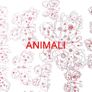 _ANIMALI